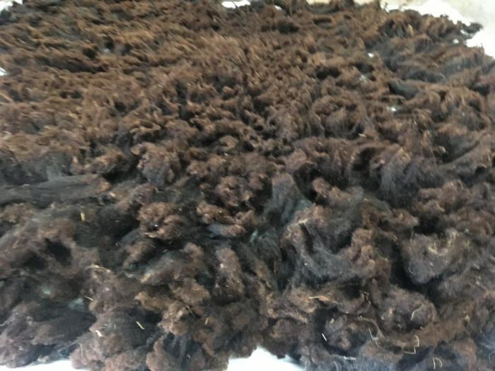2020 Shetland Shearling Fleece from Elsie