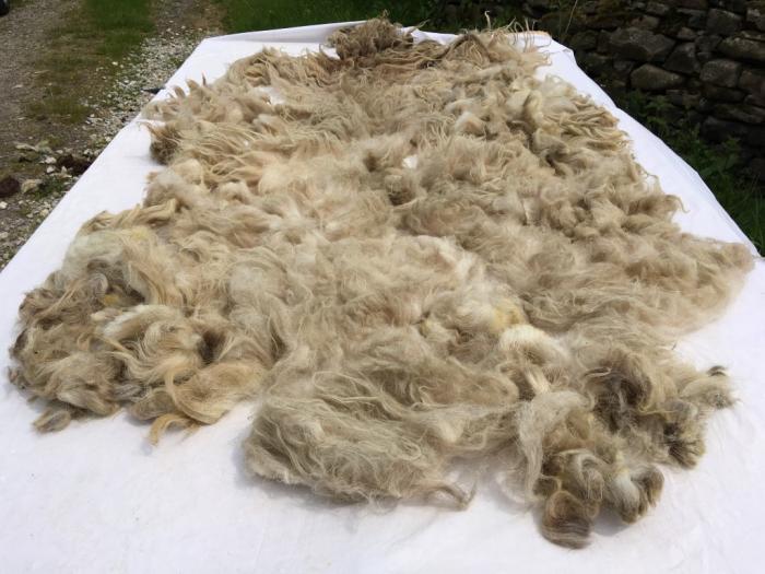 2021 Boreray Fleece from Fern