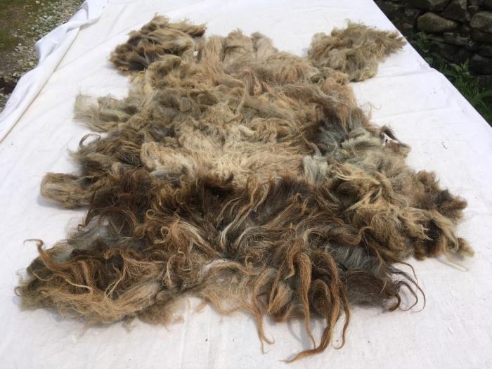 2021 Boreray Fleece from Flame